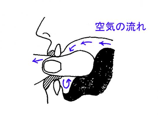 指 笛 の 鳴らし 方